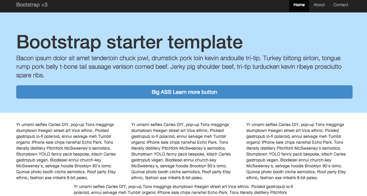 Boostrap 3 Starter Template Example