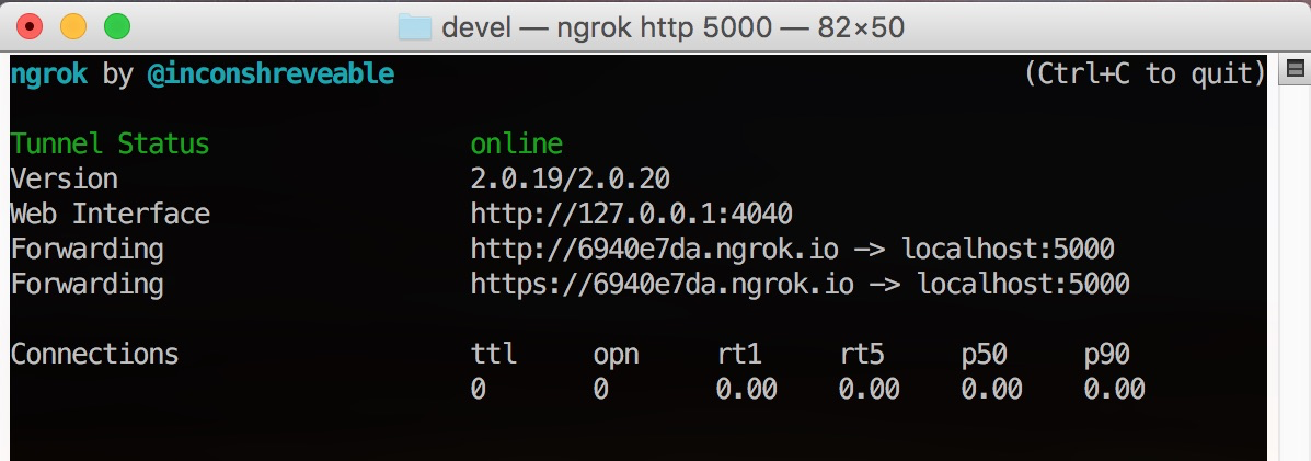 Terminal session running ngrok