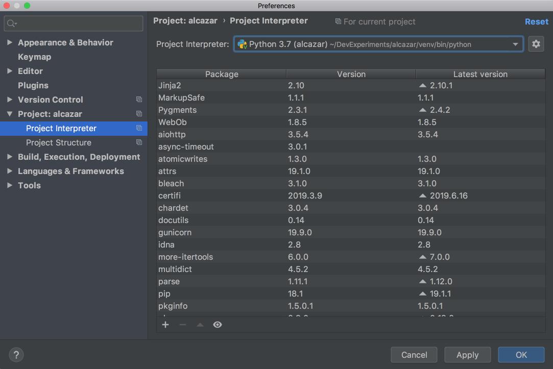 Project interpreter in PyCharm